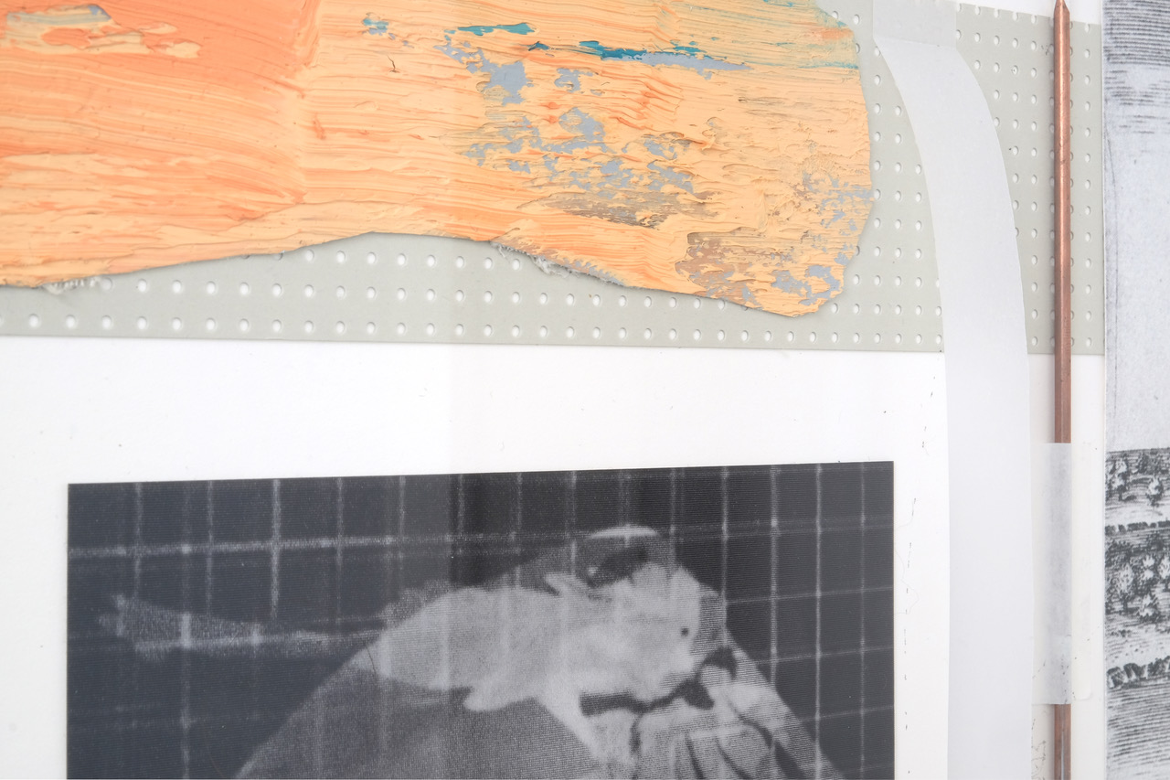 'Between Memory (If,..the Horizon)', detail: Oil on canvas, cardboard, brass bar, tape, graph paper, lenticular postcard: Animal Locomotion by E. Muybridge (Bird), digital print fragment of J. White's engraving