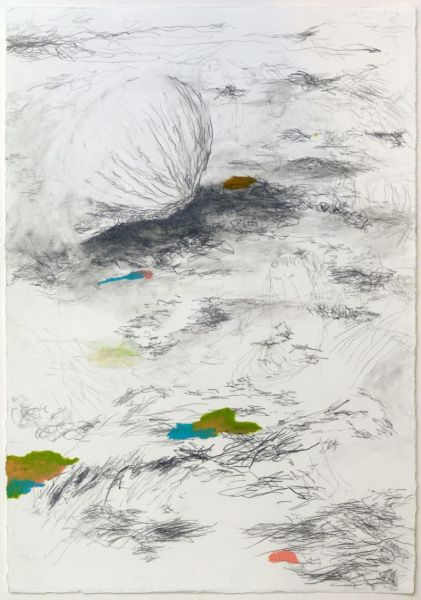 from the series 'The Vertebral & the Invertebrate II', 42 x 29,8 cm, graphite and oil pastel on paper, 2007