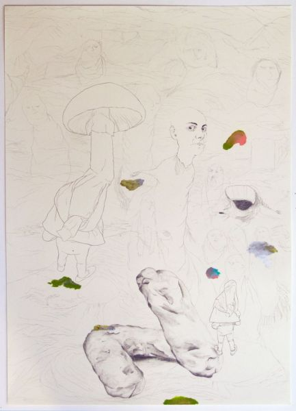 from the series 'The Vertebral & the Invertebrate II', 61 x 43 cm, graphite and oil pastel on paper, 2007