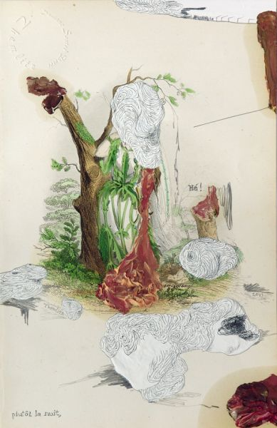 "'Bonjour Monsieur G. / plutôt la nuit', acrylic, graphite and oil on handcoloured steel engraving by J. J. Grandville ""Les Fleurs Animées"" (1867), 25 x 15,5 cm, 2013"