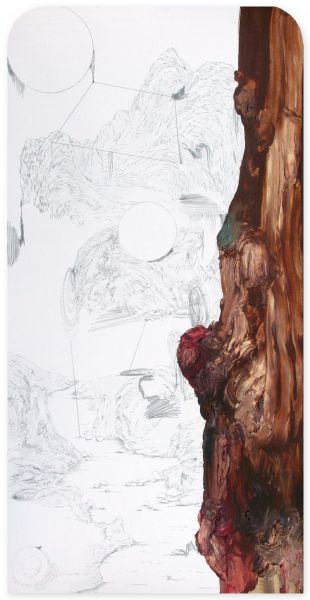 from the series 'Still Alive ... se bifurcan y solapan', graphite and oil on paper, 68 x 34 cm, 2013