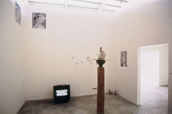 'The Good, the less Good and other Survivers', installation view Bienal, Maia, (PT) 1999